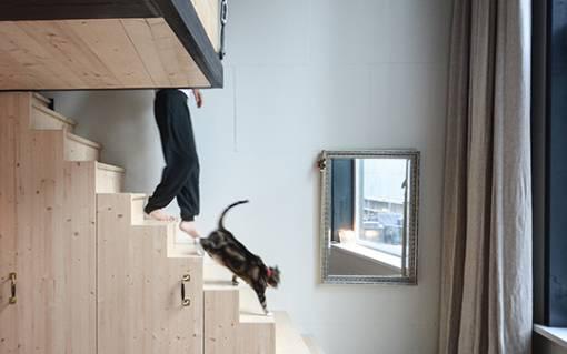 Thumbnail for loft appartement amsterdam